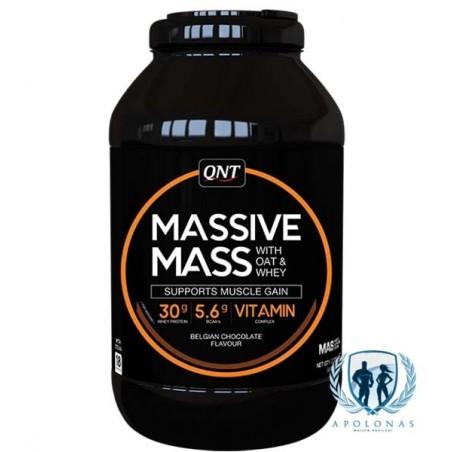 QNT Massive Mass 2.7kg