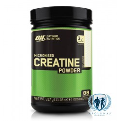 ON Micronised Creatine 317g